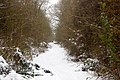 Dismantled railway trackbed in the snow (4) - geograph.org.uk - 1659786.jpg