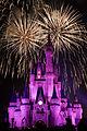 Disneyworld fireworks - 0243.jpg