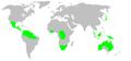 Distribution.symphytognathidae.1.png