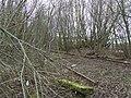 Disused railway line - geograph.org.uk - 1188635.jpg