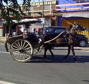 Dogcart - Image: Dokar from Kalibaru, East Java, Indonesia