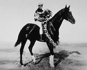 1910 Kentucky Derby - 1910 Kentucky Derby winner Donau