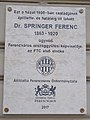 Dr. Springer Ferenc (1863-1920) emléktábla, Hőgyes Endre utca 11, 2017 Ferencváros.jpg