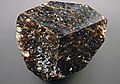 Dravite tourmaline (Yinnietharra Granite Pegmatite, Proterozoic; Yinnietharra, Pilbara, Western Australia) (31305876743).jpg