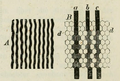 Drawing of perceived aliasing patterns by Helmholtz.png