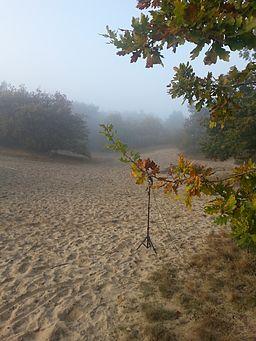 Drunense duinen (zand)