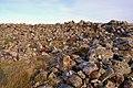 Dun Flashader - geograph.org.uk - 678811.jpg