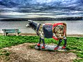 Dunavski kej - panoramio.jpg