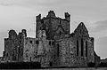Dunbrody Abbey at dawn.jpg