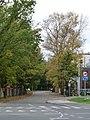 EU-EE-TLN-Nõmme-Kauge street.JPG