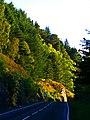 Early Autumn - panoramio (2).jpg