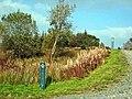 East Aquaduct Road - geograph.org.uk - 263522.jpg