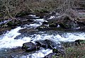 East Lyn River - geograph.org.uk - 687224.jpg