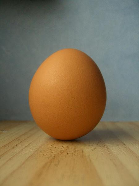 File:Egg.jpg