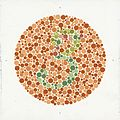 Eight Ishihara charts for testing colour blindness, Europe Wellcome L0059161.jpg