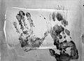 Empoisonnement à l'acide de Mme Bollo, empreintes de mains contre le mur, Bière.jpg