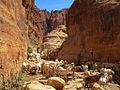 Ennedi Canyon (23527172393).jpg