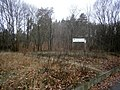 Entenschnabel - Grundstück9Spitze südlicher.jpg