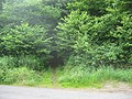 Entrance to Norton's Wood - geograph.org.uk - 1361260.jpg