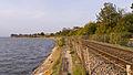 Exe Estuary alongside the Avocet Line.jpg