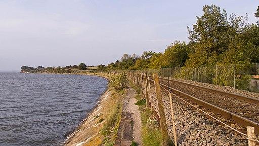 Exe Estuary alongside the Avocet Line