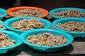 FMSC Staff Trip 2011 - FMSC Meals (6384078167).jpg