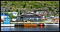 Family Road Trip to Newfoundland July 12th-28th 2017 (23929468377).jpg
