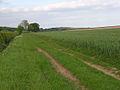 Farm track, Buscot - geograph.org.uk - 442856.jpg