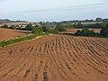 Farmland, Saunderton - geograph.org.uk - 957234.jpg