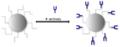 FePt-NP Antibody Application.png