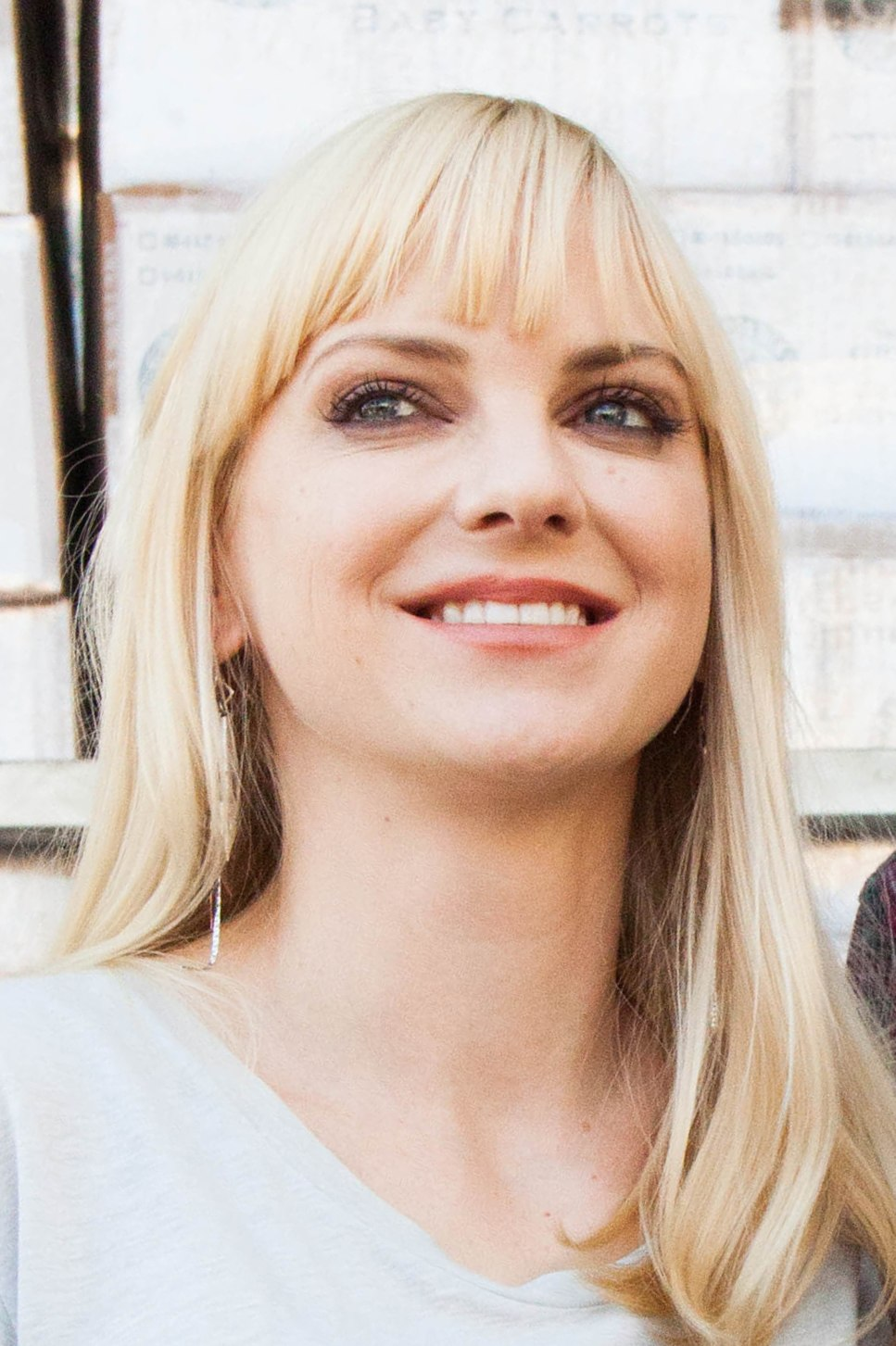 Feed America, Cloudy with a Chance of Meatballs 2, Anna Faris (cropped)