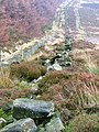 Fence and Ruined Wall, Highcliffe Moor - geograph.org.uk - 299432.jpg