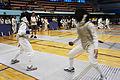 Fencing (CCA).jpg