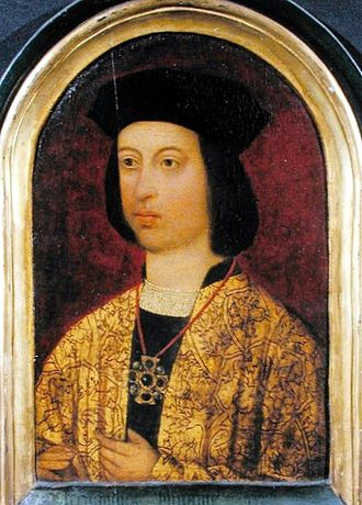 Prince of Girona - Image: Ferdinand of Aragon