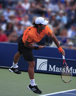 Fernando Verdasco Serve