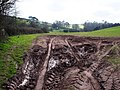 Fine muddy tyre marks, field entrance Hook Bottom - geograph.org.uk - 368895.jpg