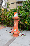 Fire Hydrant in Sidewalk of Hsinchu Air Force Base 20151121.jpg