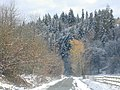 First Snow - panoramio.jpg