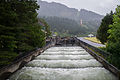 Fish Ladder, Bonneville Dam-2.jpg