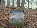 Fliehburg im Bannwald - panoramio.jpg