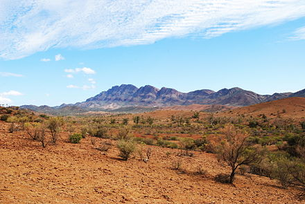 Arid land in the Flinders Ranges Flinders ranges pastoral land.JPG