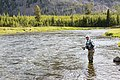 Fly fishing on the Madison River (47477ff9-849a-4132-bab2-7c049761cce7).jpg