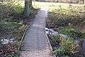 Footbridge in Dunorlan Park - geograph.org.uk - 1610661.jpg