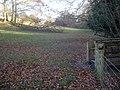 Footbridge near Barn Farm - 1 - geograph.org.uk - 1174446.jpg
