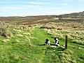 Footpath, Waen Gyrach - geograph.org.uk - 242553.jpg