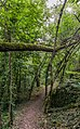 Footpath in Peyrusse-le-Roc 02.jpg
