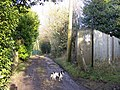 Footpath on Manor Drive - geograph.org.uk - 1149921.jpg