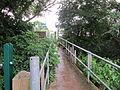 Footpath to Shotton railway station (low level).JPG
