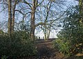 Footpath towards Peover Hall - geograph.org.uk - 335699.jpg