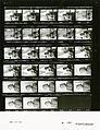 Ford A0160 NLGRF photo contact sheet (1974-08-17)(Gerald Ford Library).jpg